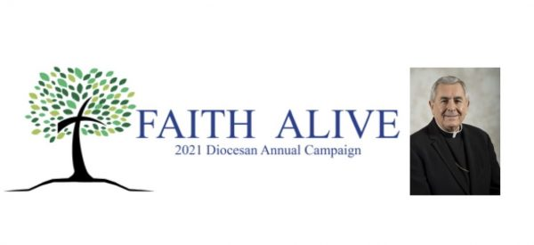 Faith Alive! Video Series.. read more..